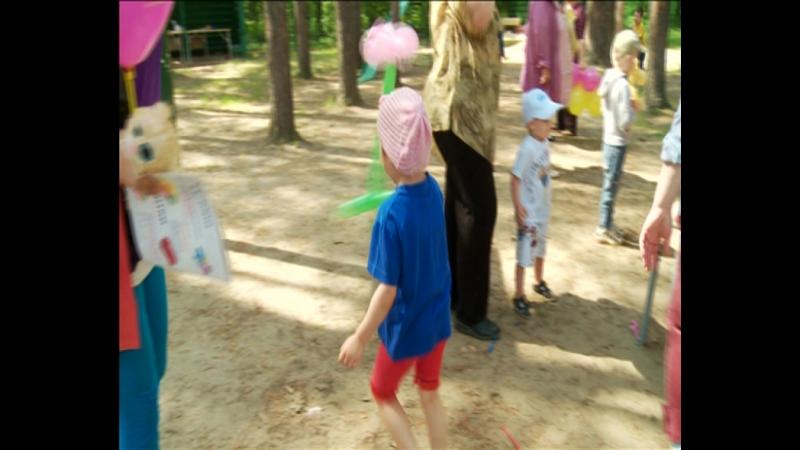 Добровольцы детям. Лето 2015