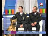 Лучшая служебная собака страны, овчарка Айза в гостях у