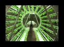 ГИДРОПОНИКА. Лучшие вертикальные садовые системы. Best vertical hydroponic gardening systems