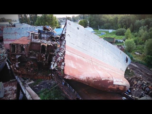 Кладбище кораблей и кривой лес. Калининград часть 2.