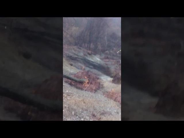 Зсув ґрунту Калини Тячівщина