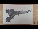 Raven 2  - Gunpowder Art - Danny Shervin
