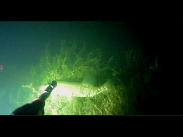 Подводная охота 22 09 17 Закрытие сезона Щука, линь, окунь