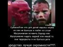 Elllik_panda video