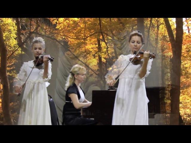 Таинственный сад(Secret garden)-Дуэт скрипок и фортепиано.
