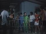 Сила боксера шаолинь  Force of the Shaolin Boxer (1986)