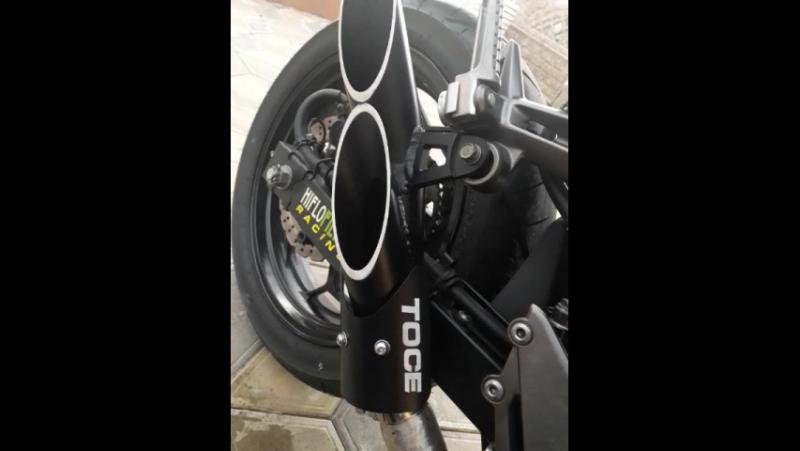 Kawasaki Ninja 300 (Toce exhaust)