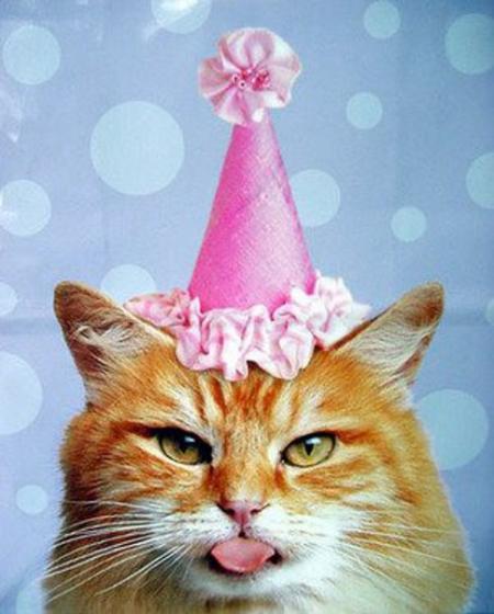 Картинки на аву с днем рождения смешные