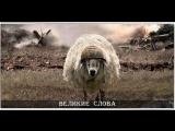 Стадо баранов, возглавляемое львом, всегда одержит победу над стадом львов, возглавляемых бараном.