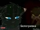 Смерти котов воителей мое видео
