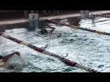 Соревнования по плаванию,H2O,кроль,2 бассейна,Ростов,ноябрь 2017