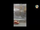 «Форт Боярд» – Омские дети идут в школу, карабкаясь по забору