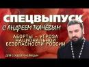 Аборт - угроза национальной безопасности России. Протоиерей Андрей Ткачев