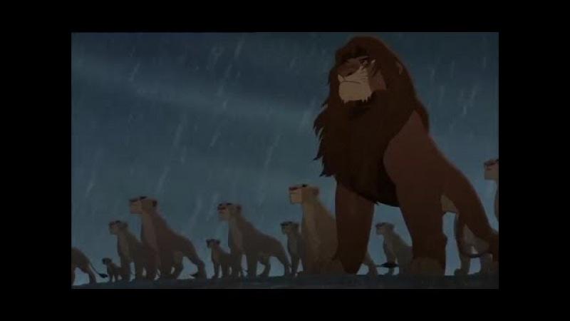Der König der Löwen 2 - Es ist Krieg!