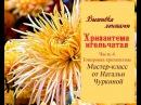 Мастер-класс Хризантема игольчатая от Натальи Чуркиной. Часть 4. Тонировка хризантемы