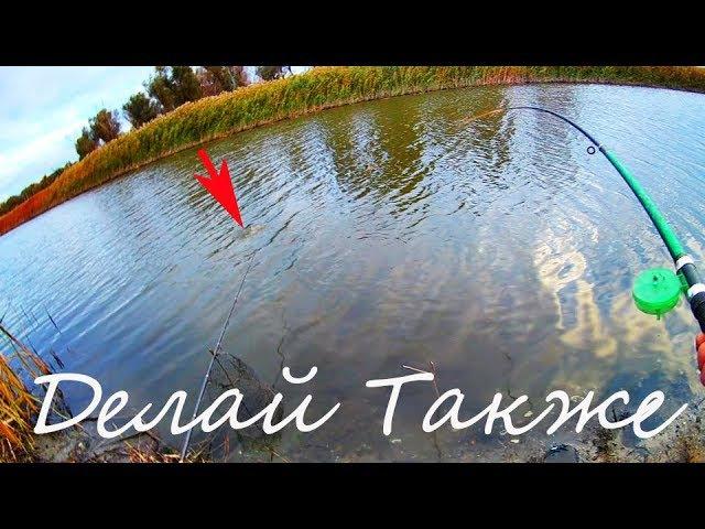 Осенняя Рыбалка В ноябре на Карася и Карпа поздней осенью