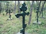 Юлия Запольская На сопках Маньчжурии