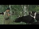 Год телёнка.1986.(СССР. фильм-комедия)