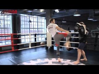 Хайкик- техника нокаутирующего удара от Дениса Гольцова