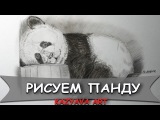 Как нарисовать панду медведя карандашомHow to draw a panda bear Kazyava Art