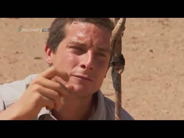 Bear Grylls. Выжить любой ценой. 2 Сезон. 1 Серия. Пустыня Сахара. (2 Часть)