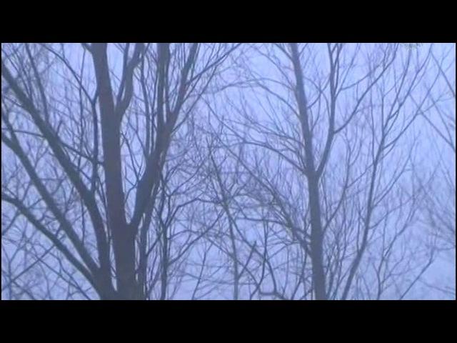 Винсент. Нерассказанная история нашего дяди 3 серия. О красках и крестьянах (2012)