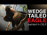 How to paint BIRDS The Majestic WEDGE TAILED EAGLE Oil Painting Tutorial