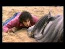 Mario Luraschi moje Magiczne Konie part6