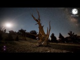 illitheas - Shine (Intro Mix) Abora Skies Promo