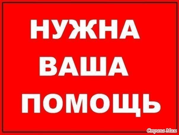 Добрый день! 1 октября на базе фонда, по адресу : Марченко 24, офис 21