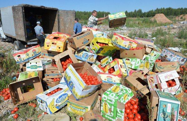 В Россию хлынула волна санкционных продуктов