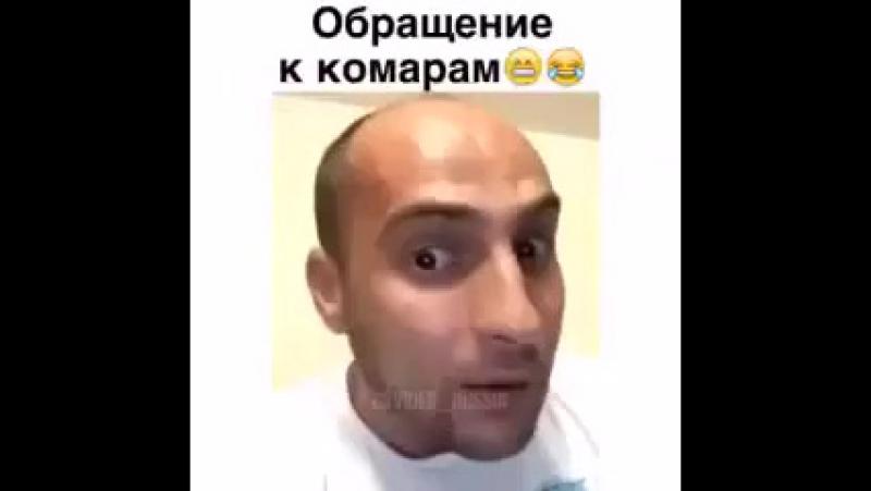 Стрела хах пздц))