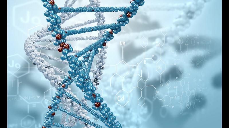Кто копошится в генах ЧЕЛОВЕЧЕСТВА