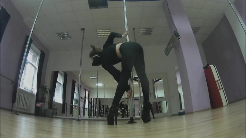 Stripper Exotic Dancer Resume Result