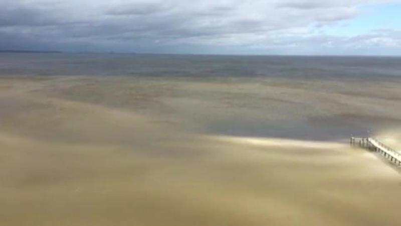 ..явление ухода воды из залива Пенсакола в понедельник, 11 сентября 2017 года, как видно из кондоминиума Bayshore между базой во