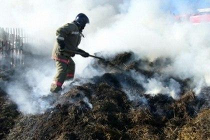 В станице Сторожевой сгорело 20 рулонов сена