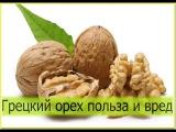 Грецкий орех. Польза и вред грецкого ореха для организма. Чем полезны