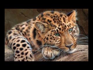 Алмазная живопись Леопард