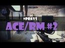Warface. ACE/RM 2 с АТ 308