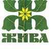 Семинар - посвящение Жива 1 ступень Бережа в СПб