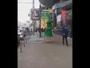 Ростовская ходячая ель 18.11.2017 Ростов-на-Дону Главный