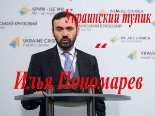 Украинский тупик и Илья Пономарев