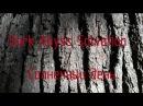 Dark Abyss Salvation - Солнечный день (OFFICIAL VIDEO)