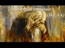 Какое особенное утешение обещает Господь плачущим? Заповеди Блаженства. Беседа 3.