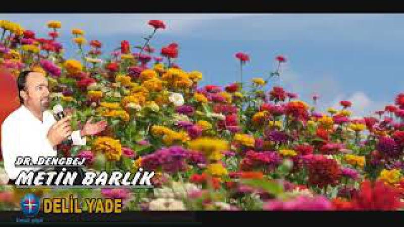 Dengbej, Metin Barlık Delil Yade - Yeni Kürtçe Seçme Şarkılar 2017 - Kurdısh Music