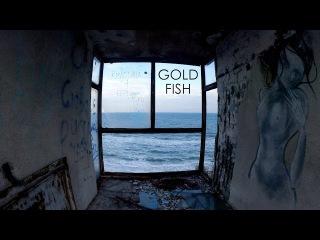 GoldFish / Золотая Рыбка