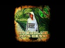 Iguan On Evolue Sans Cesse Mixtape Entière Full Album Rap Francais French rap Underground
