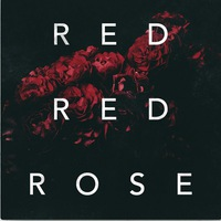 12.10 / RED RED ROSE + ЗОРКИ ВО / Джао Да