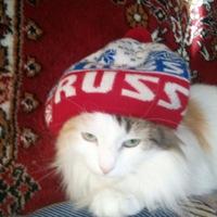 ВКонтакте Гоша Матянин фотографии