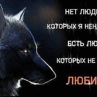 Дима Мурзин